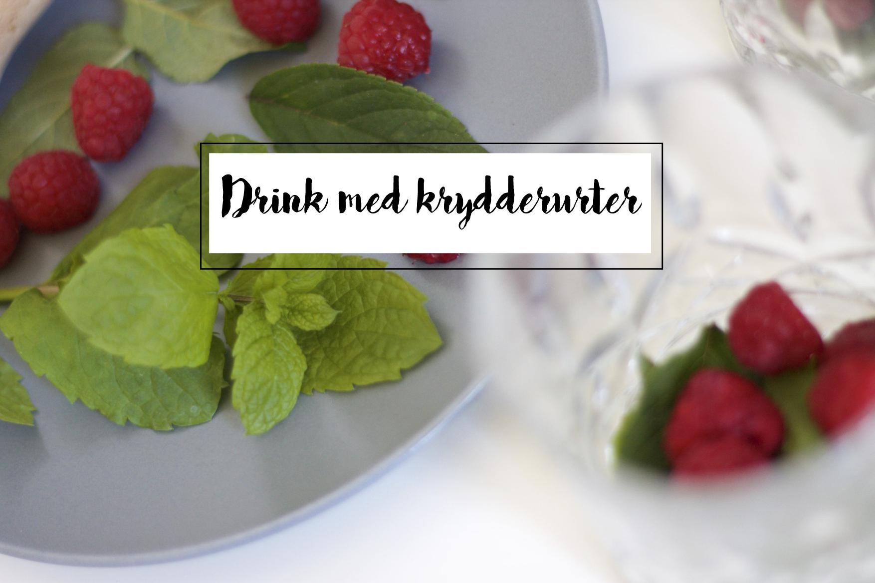 ANANASSALVIE MYNTE HINDBÆR GIN FIZZ DRINK KRYDDERURTER