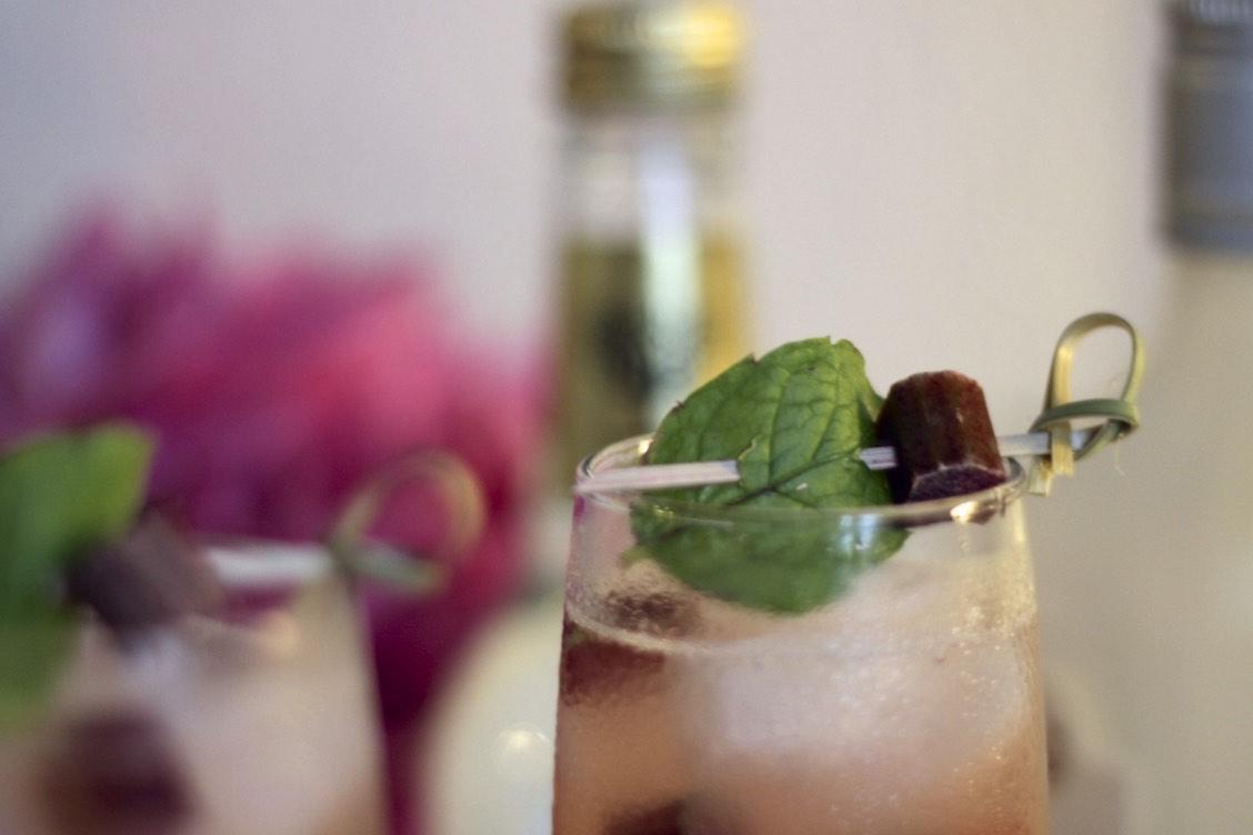 lets blog some shit jeanette hardis odensebloggers odense blogger blog drinks rabarber mynte gin tonic opskrift